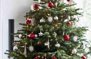 Donászy Magda: Karácsony