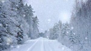 Nemes Nagy Ágnes: Hóesésben
