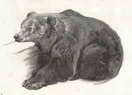 Osvát Erzsébet: Minek a medvének bunda?