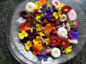Csukás István: A bűvös virág