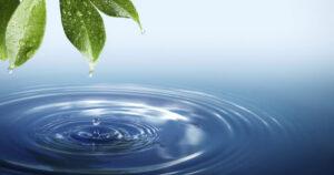 Orgovány Anikó: A víz kincs